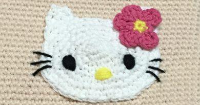 พิกัด-สัดส่วนบนใบหน้าน้อง Kitty